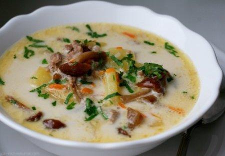Суп грибовница