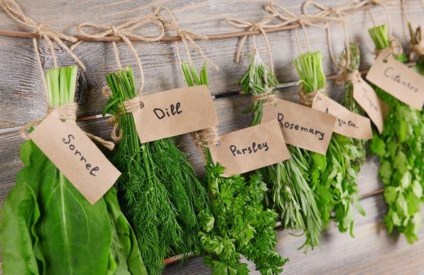 как заготовить зелень на зиму