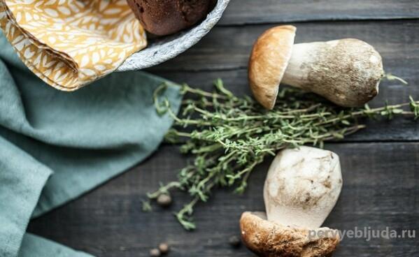 Белые грибы: как их покупать, почистить и приготовить