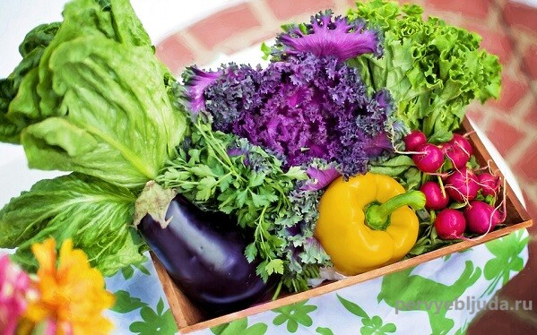 Как сохранить свежесть продуктов: 5 актуальных советов для хозяюшек