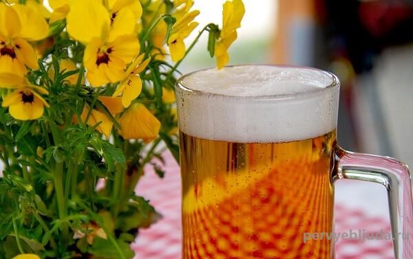 Какое пиво вкуснее— сваренное из солода или экстракта?