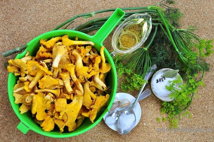 ингредиенты для соления лисичек