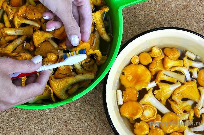моем грибы лисички