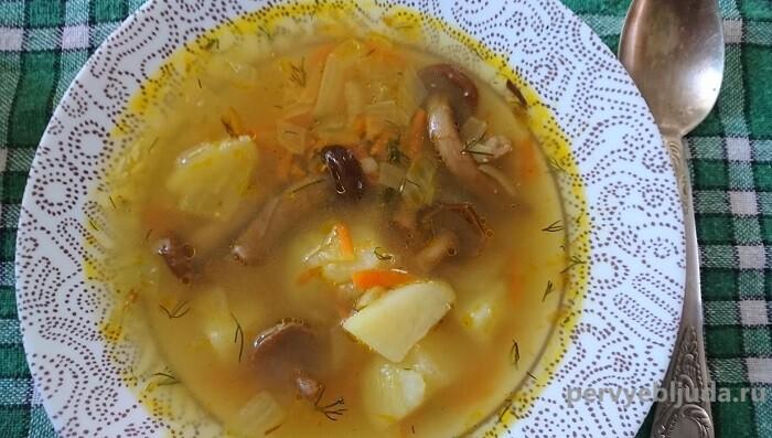 суп с замороженными опятами
